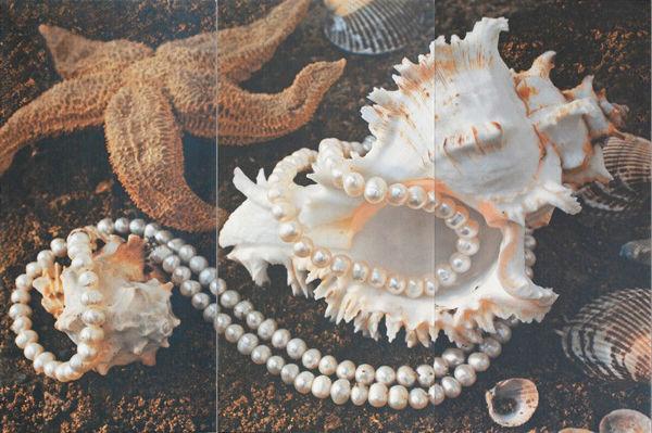 Снимка на Пано 50/75 Sea Shell Неос 19301 к-т от 3бр
