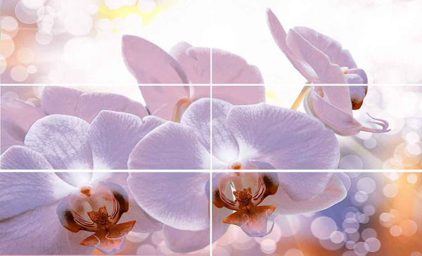 Снимка на Декор 60/100 Виола Орхидея 24931
